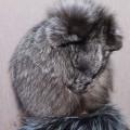 Шапка Лисичка (серый)